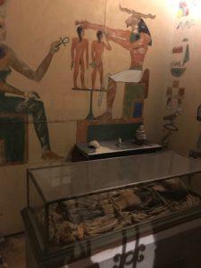 mumia lightner museum