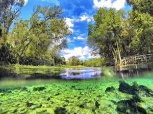 Wekiwa Springs, um paraíso na Flórida