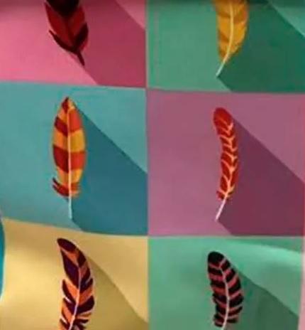 colorida 1